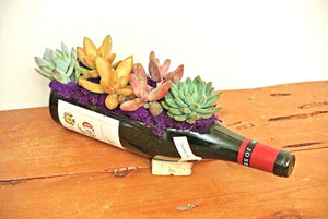 Gift for Wine Lover or Succulent Lover - Wine Bottles Cut into Glass Planters with Drainage