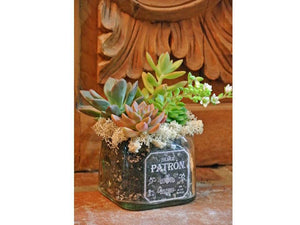 Patron Bottle cut into Candy Dish - Nut Dish - Manly Gift Ideas for Boyfriend Husband Brother