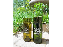 Self Watering Hydroponic Garden Gift in a Wine Bottle - Indoor Herb Garden for your Kitchen