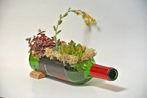 Wine Bottle Planter (empty) - Stunning Wine Gifts and Wine Bottle Decor