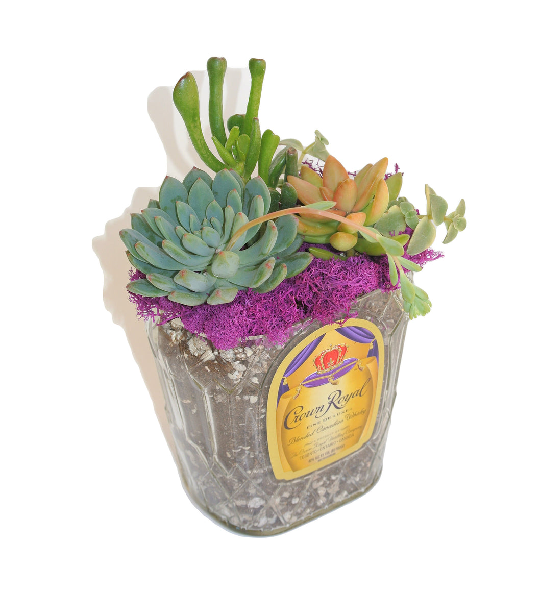 Crown Royal Whiskey Bottle Planter with DRAINAGE! - Succulent Gift