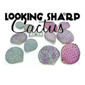 Purple Cactus Plant - 3 Prickly Pear Cactus Pads - Succulent Cuttings