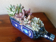 Choice of Gin Lover Gifts - Blue Glass Succulent Planter, Snack Bowl or Vase - Bombay