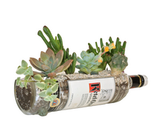 Ketel One Vodka Bottle