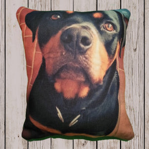 Quirky Animal cushions