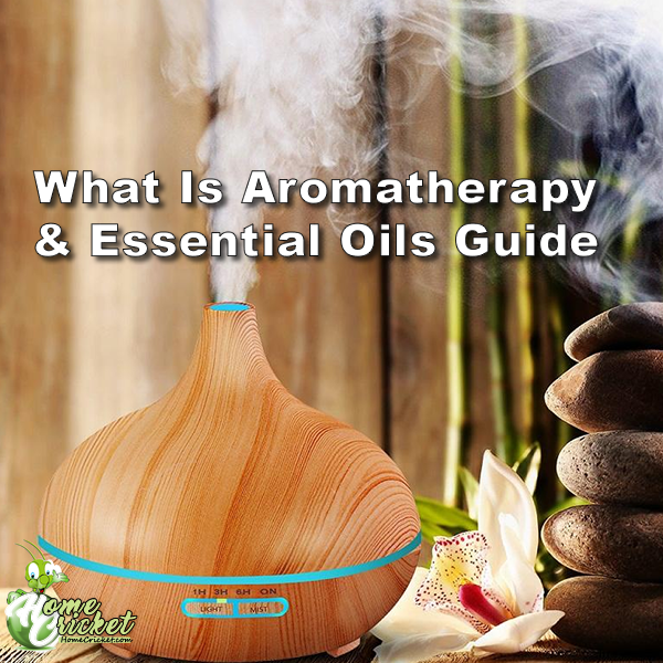 What Is Aromatherapy & Essential Oils Guide | HomeCricket