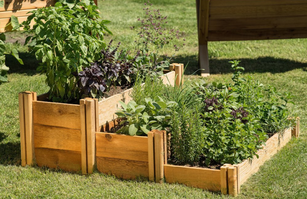 Multi-Level Rustic Raised Garden Bed