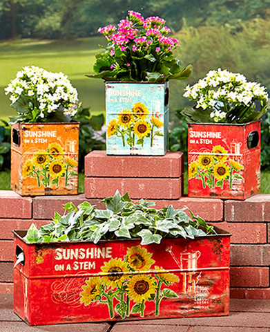 Charming Gardening Set of 4 Sunflower Rustic Planters Or Storage Bins