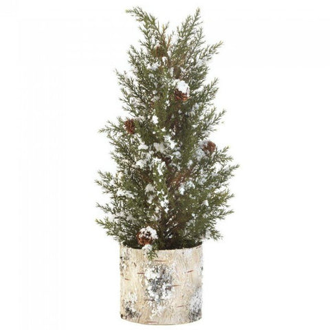 Snowy Pine Tree Topiary in Birch Pot - 17 inches