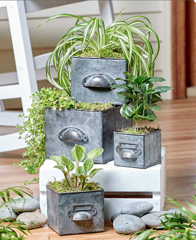 Galvanized Drawer Shaped Planters With Liner Set of 4