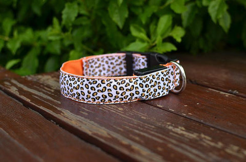 Luminous pet LED luminous Fluorescent luminous leopard dog collar
