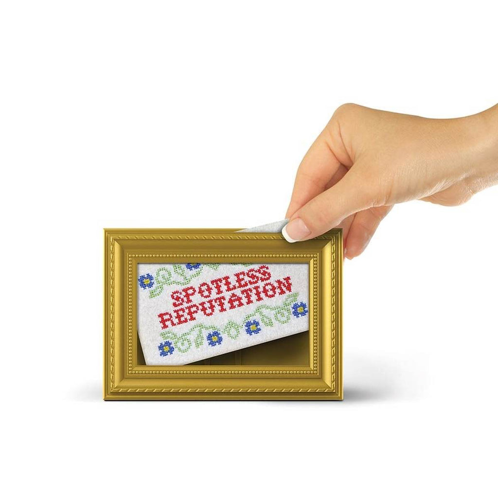 A subversive sponge being placed into a gold frame with the saying spotless reputation on the front