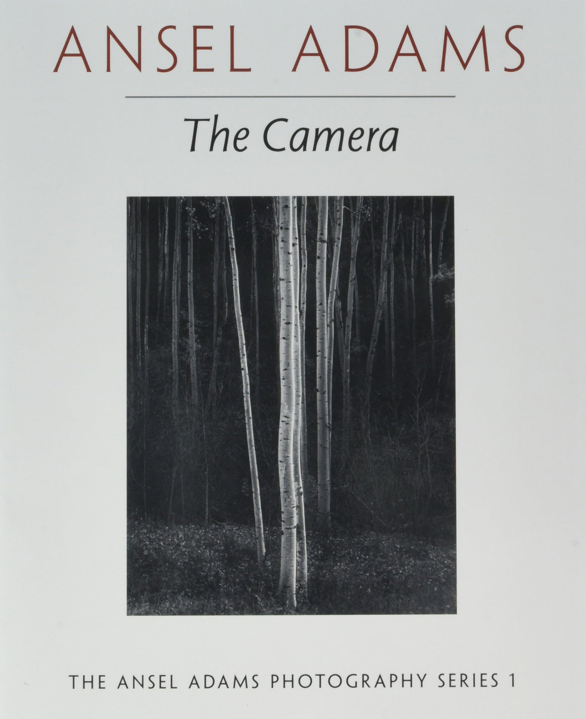 Book featuring cover art of The Camera