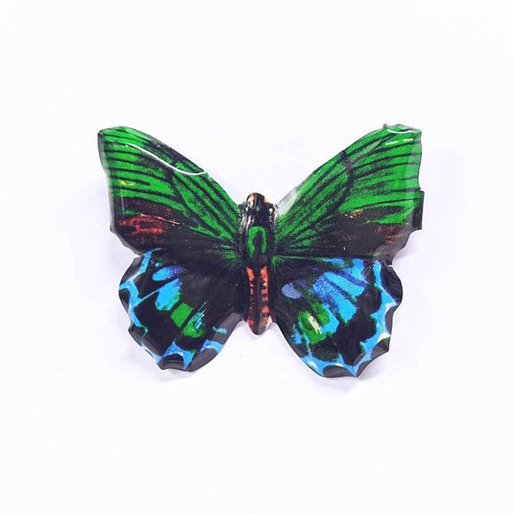 A group of butterfly shaped tin brooches. They are in a range of colours: Red, Green, Yellow and Yellow/Purple