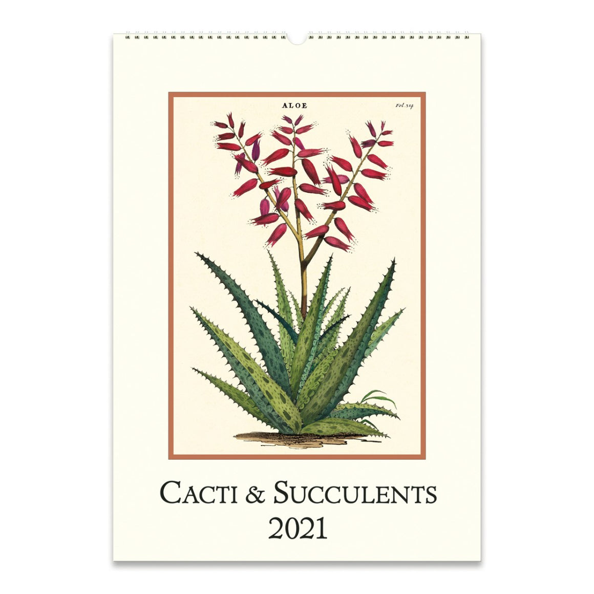 A 2021 Wall calendar featuring a vintage succulent image in bold colours.