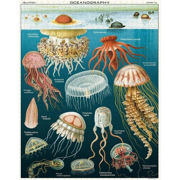 A cylindrical puzzle box featuring a vintage illustration of assorted jellyfish depicted underwater.