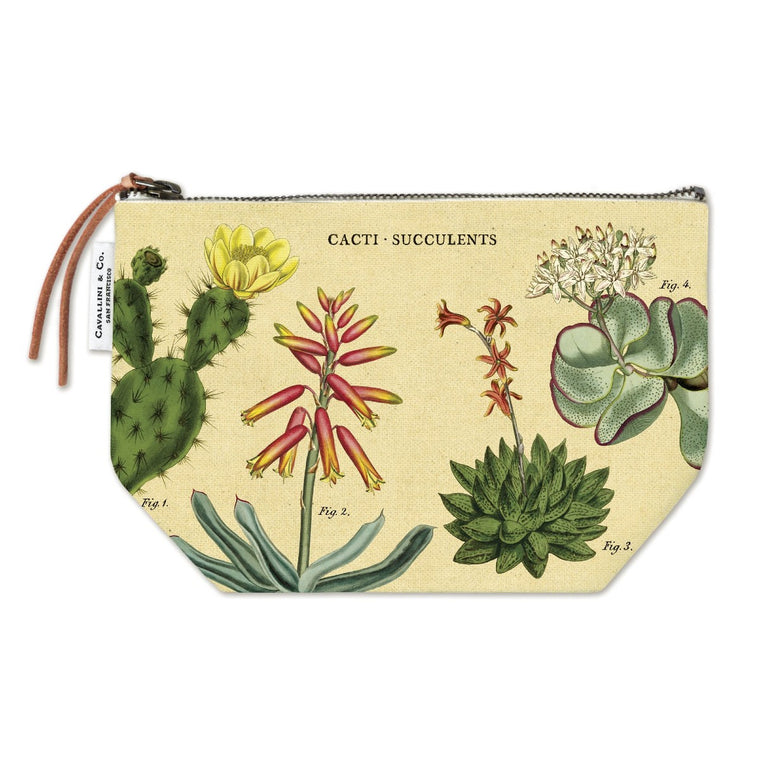 A pencil case sized zip pouch made of natural cotton printed with a vintage botanical illustration of numerous cacti and succulents.