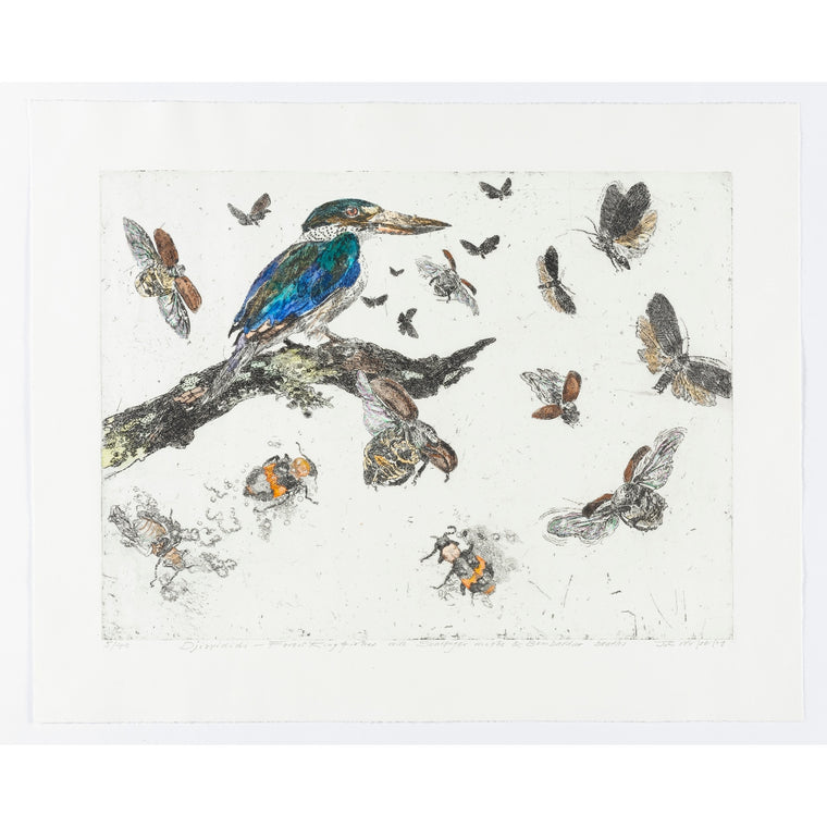 John Wolseley | Djirrididi – forest kingfisher with scavenger moths and bombardier beetles | Limited edition prints