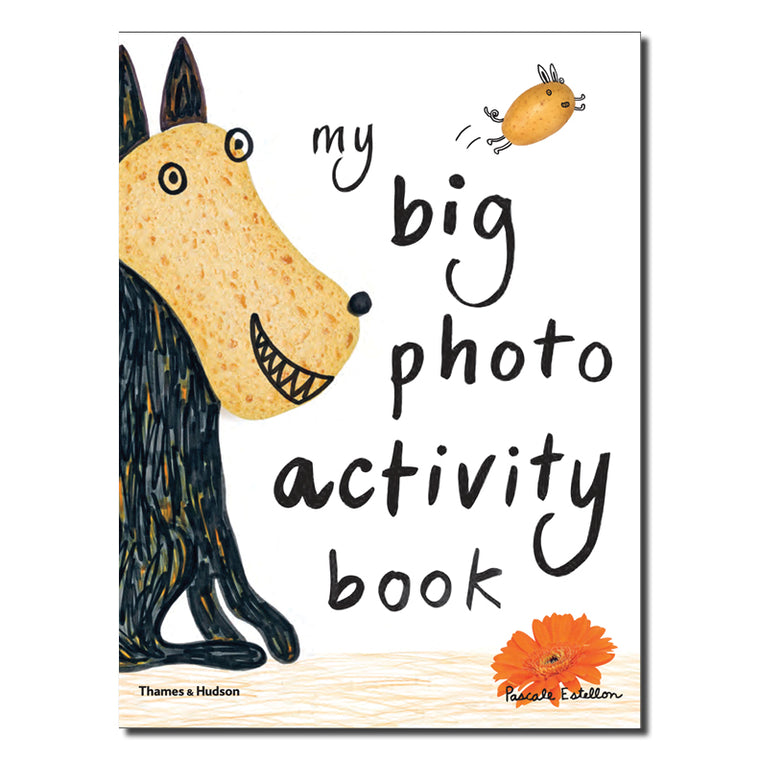 My Big Photo Activity Book