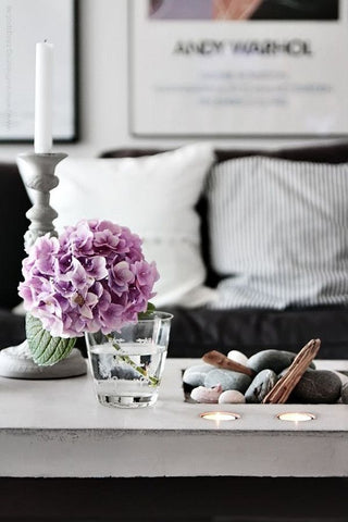 Violet flowers on coffee table