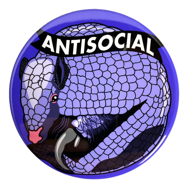 Antisocial Magnet or Mirror