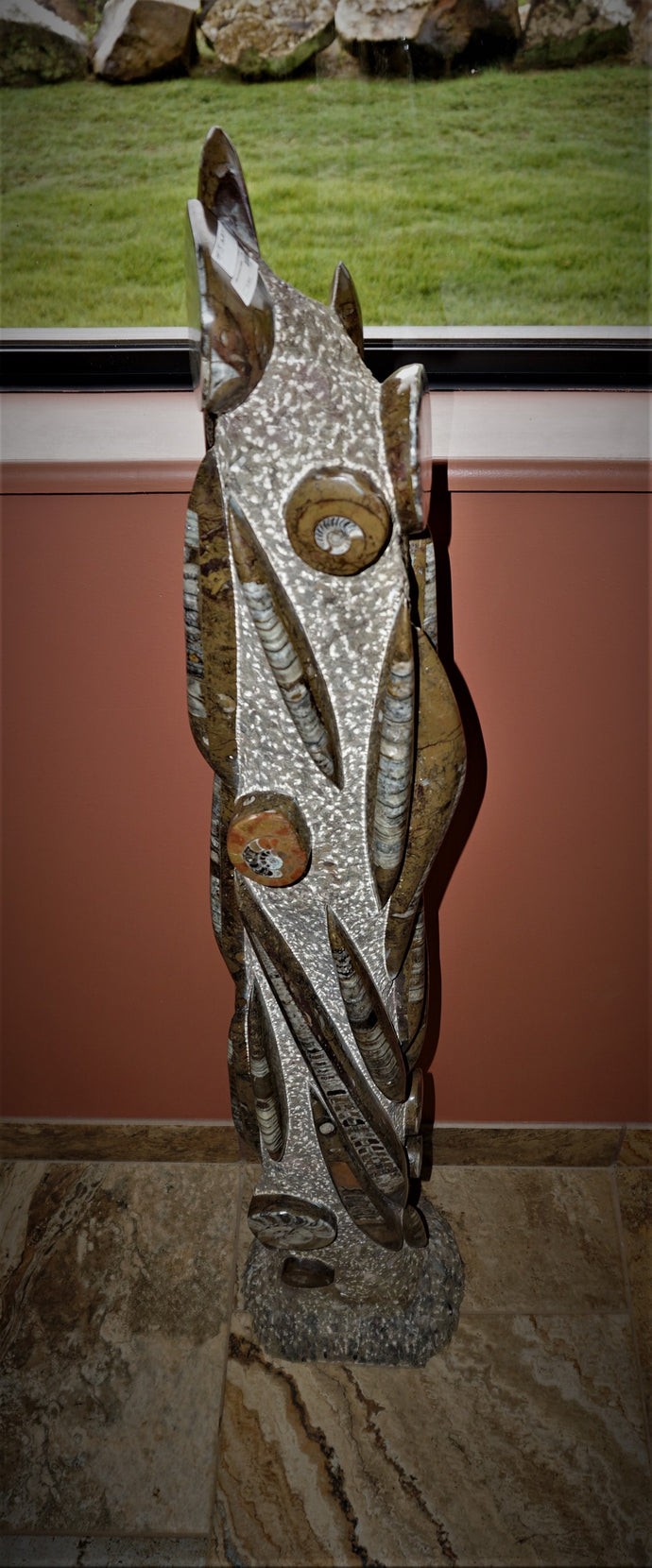 Orthoceras and Ammonite Tall Specimen Unique Home Decor Ron Coleman Mining