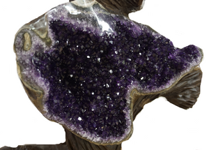 Close Up OF Amethyst Crystals In A Hand Carved Sculpture