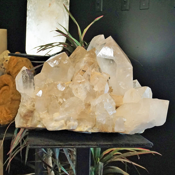 Large Quartz Crystal Cluster Unearthed At Ron Coleman Mining, Arkansas