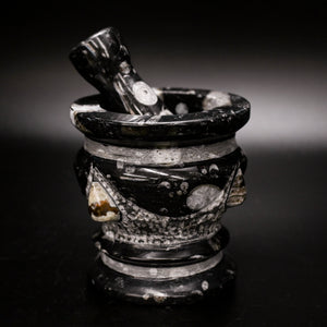 Natural Fossil Mortar & Pestle
