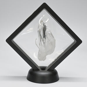 Crystal Specimen Mined At Ron Coleman In A Black Frame