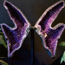 Close Up Image Of Wide Amethyst Geode Butterly Wings