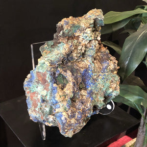 Azurite With Malachite Mineral Specimen