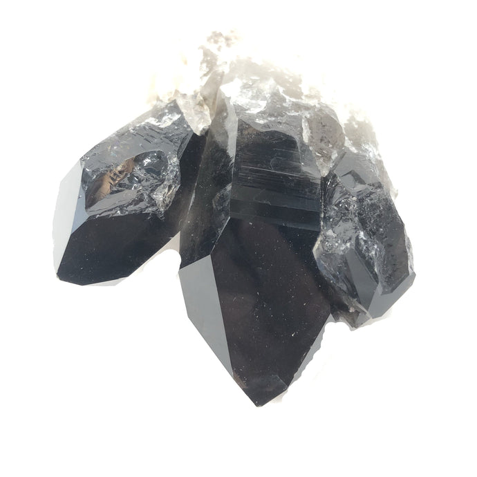 Enhanced Quartz Crystal Black Unique Black Mineral Decor