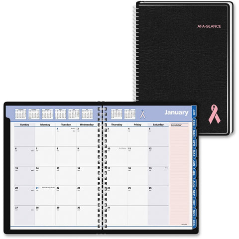 At-A-Glance Quicknotes Special Edition Monthly Planner
