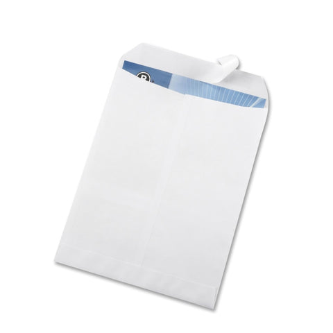 Business Source Self Sealing Catalog Envelope