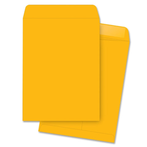Business Source Kraft Gummed Catalog Envelopes
