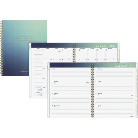 At-A-Glance Aurora Wkly/Mthly Planner