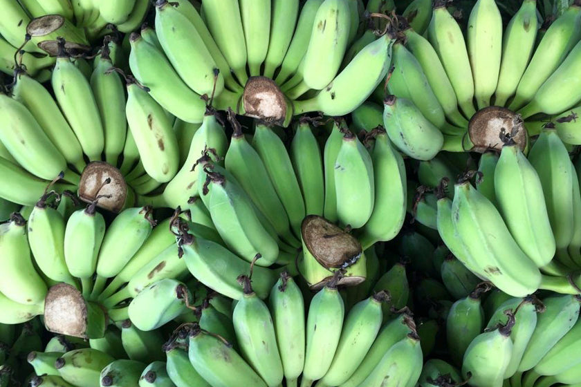 Why you should eat green banana starch – GoodnessMe
