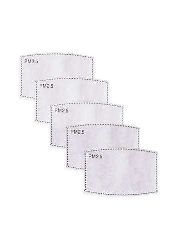 PM2.5 Activated Carbon Filters (5PK)