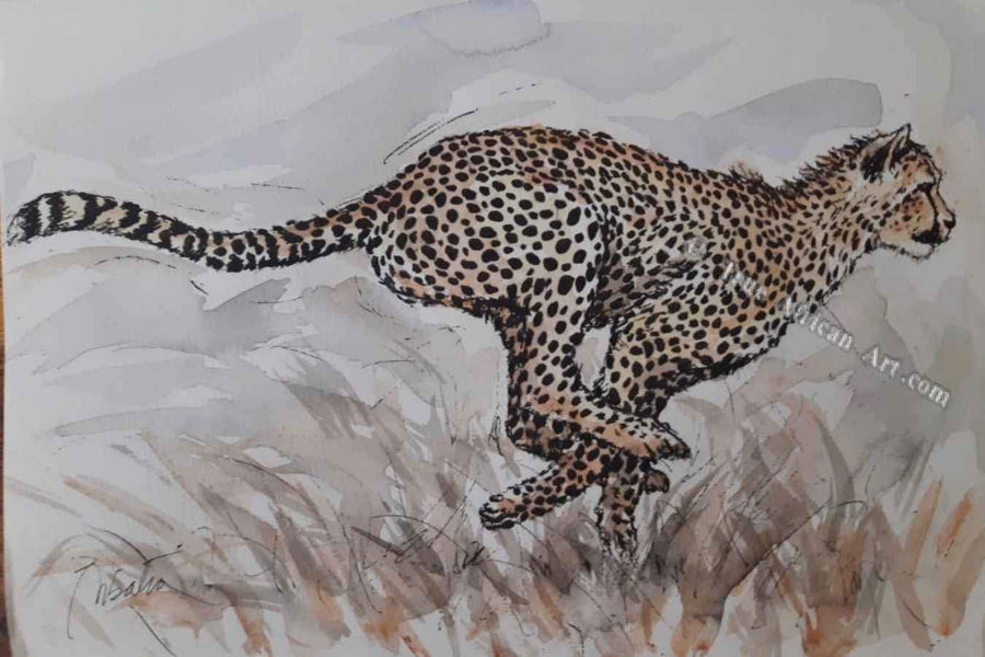 Steve Mbatia - Cheetah on the Chase