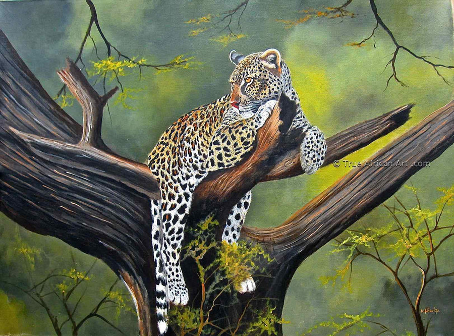 Wycliffe Ndwiga - Leopard in a Tree