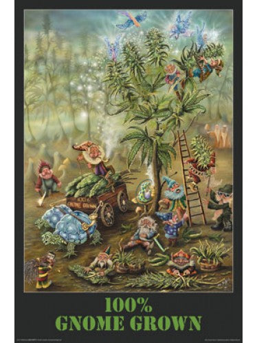 Mike Dubois - 100 Percent Gnome Grown  - Blockmounted Maxi Poster