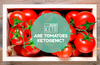 Are tomatoes ketogenic?