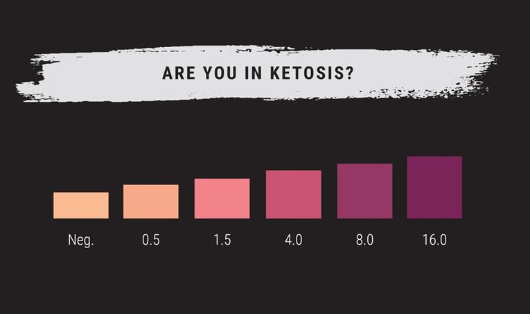 Measuring Ketosis: A Quick Guide to Ketone Strips