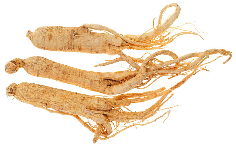 Dried-Ginseng-Roots-Isolated-On-White-Background