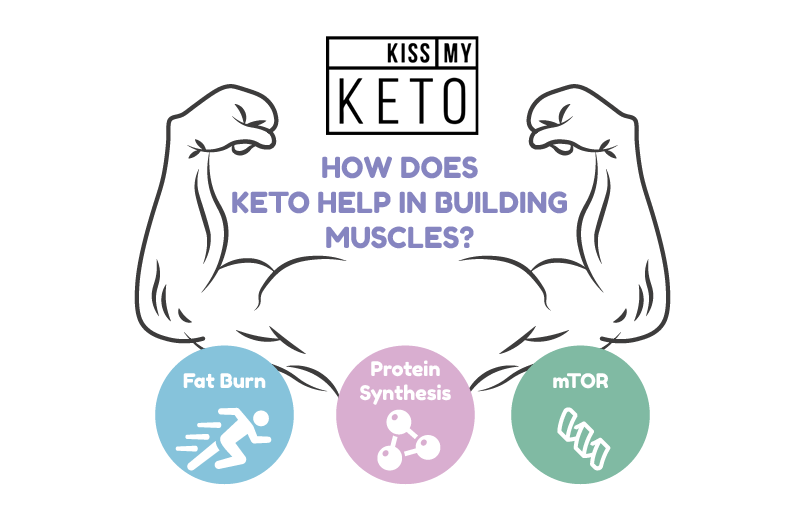 How to Build Muscle on a Keto Diet The Complete Guide_infographic_1