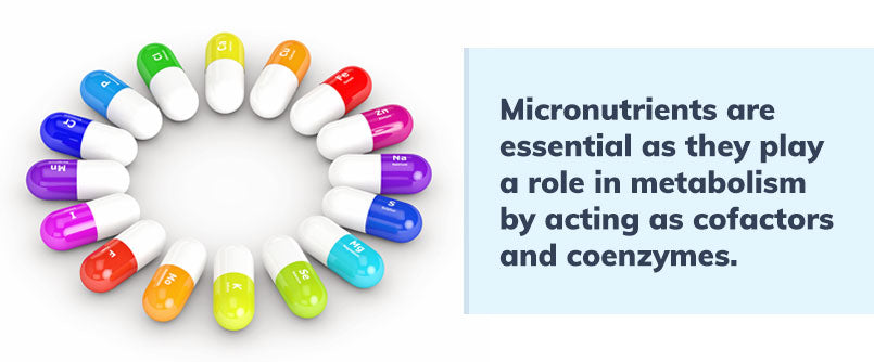 micronutrients-are-essential