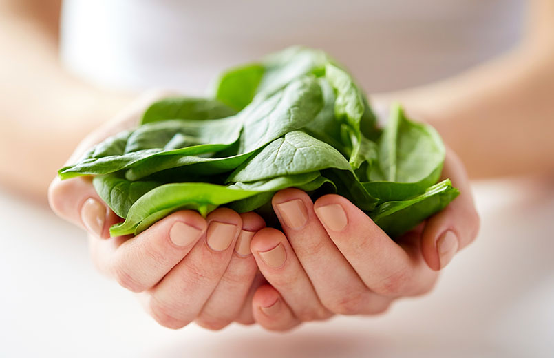 close-up-of-young-woman-holding-spinach-leaves