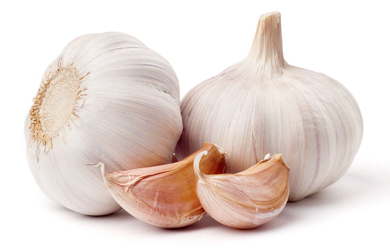 garlic-over-white-background