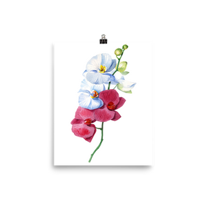 Bright and Colourful Orchid Watercolour Matte Poster